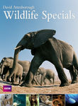 David Attenborough: Wildlife Specials