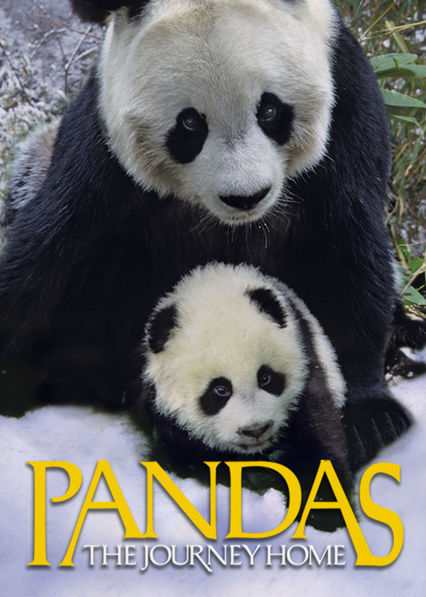 Pandas: The Journey Home Netflix PR (Puerto Rico)