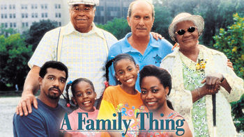 Netflix Box Art for Family Thing, A