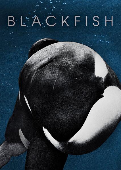 Blackfish Netflix BR (Brazil)