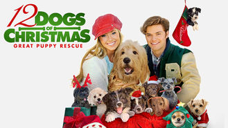 Netflix box art for 12 Dogs of Christmas: Great Puppy Rescue