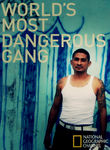 National Geographic: World's Most Dangerous Gang