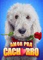 Amor Para Cachorro | filmes-netflix.blogspot.com