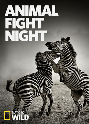 Animal Fight Night - Season 1