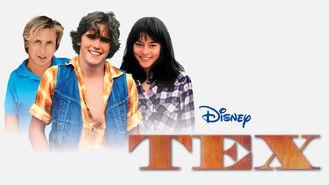 Netflix box art for Tex