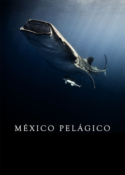 Mexico Pelagico Netflix BR (Brazil)