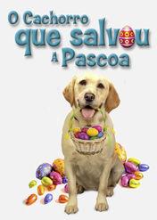 O cachorro que salvou a Pascoa | filmes-netflix.blogspot.com