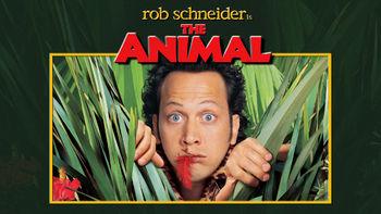 Netflix box art for The Animal