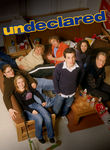 Undeclared: The Complete Series Poster