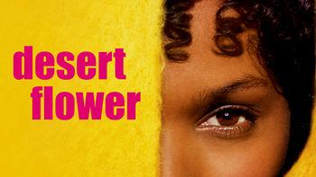 Netflix box art for Desert Flower