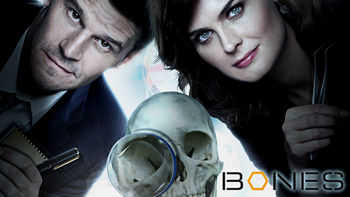 Netflix box art for Bones - Season 1