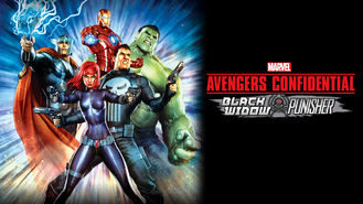 Netflix box art for Avengers: Black Widow & Punisher