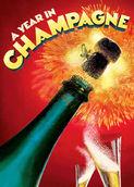 Um Ano em Champagne | filmes-netflix.blogspot.com