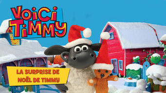 Voici Timmy : La surprise de Noël de Timmy
