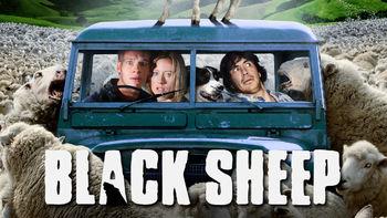 Netflix box art for Black Sheep