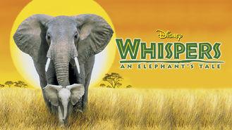 Netflix box art for Whispers: An Elephant's Tale