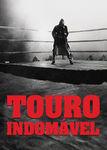 Touro Indomável | filmes-netflix.blogspot.com