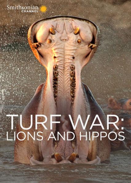 Turf War: Lions and Hippos Netflix PR (Puerto Rico)