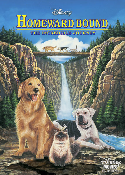 Homeward Bound Netflix ES (España)