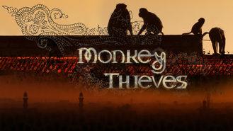 Netflix Box Art for Monkey Theives - Season 1