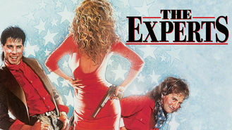 Netflix box art for The Experts