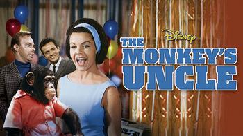 Netflix box art for The Monkey's Uncle