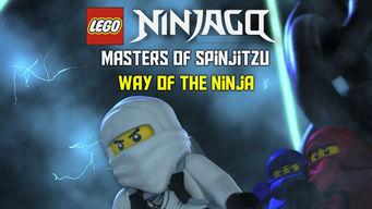 LEGO Ninjago: Masters of Spinjitzu: Way of the Ninja