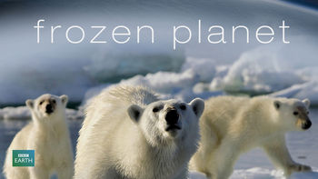 Netflix box art for Frozen Planet - Season 1