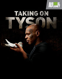 Taking on Tyson: Season 1: Battle in the Bronx