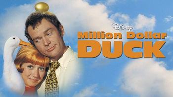 Netflix box art for Million Dollar Duck