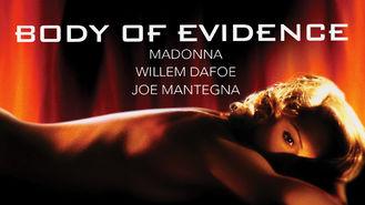 Netflix box art for Body of Evidence