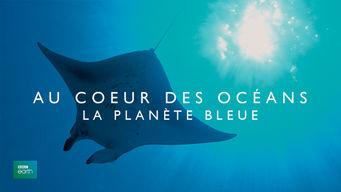 Au coeur des océans : la Planète Bleue